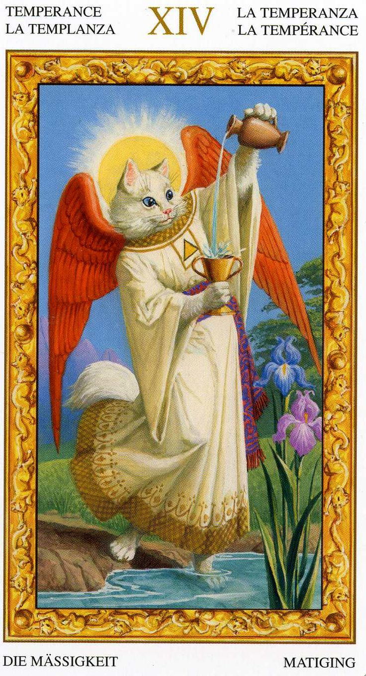 Tarot Of The Legendary: 98 Best Images About Cats In Tarot: Tarot Of The White
