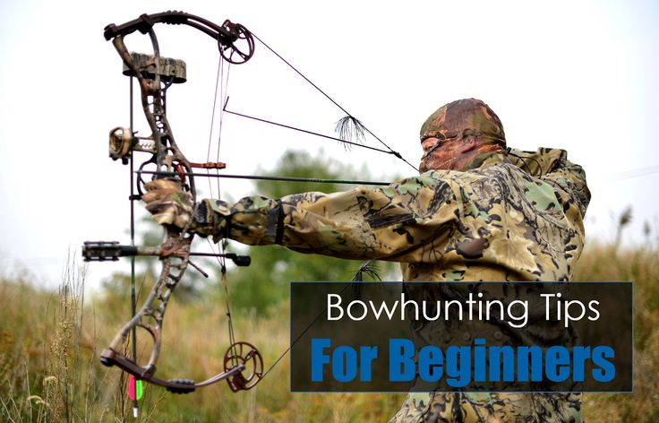 A Beginner's Guide For Bowhunters: Tips For New Archers | Wilderness Today