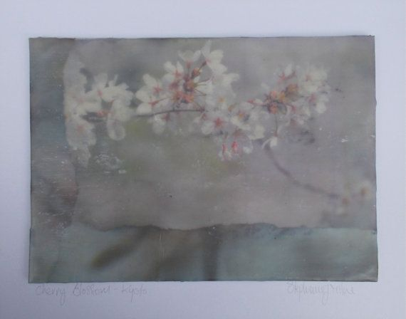 Encaustic montage of Cherry Blossom image and by StephanieJMilne http://www.stephaniejmilne.com
