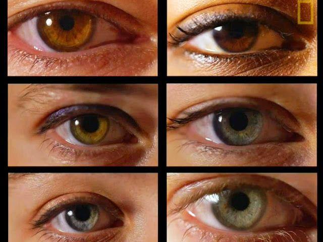 The Rooster: Τι αποκαλύπτει το χρώμα των ματιών σας για την προ...