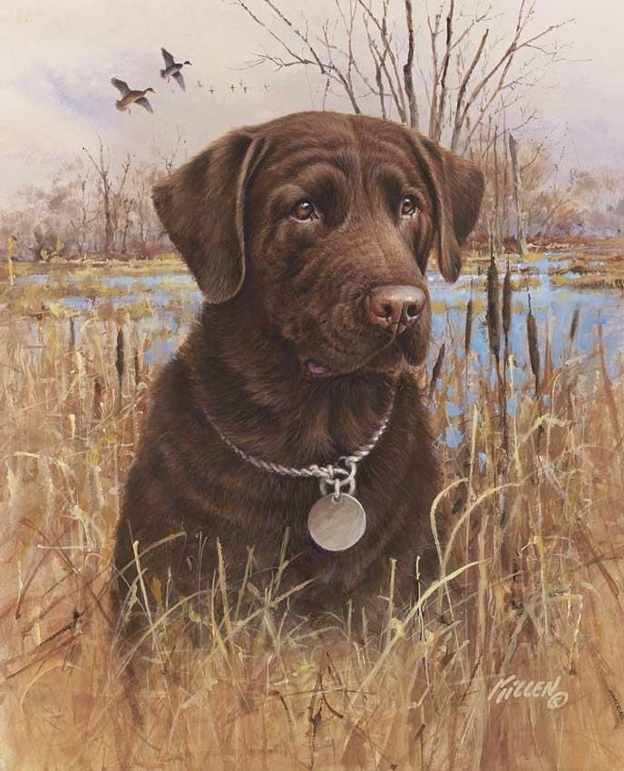 "chocolate lab hunting dogs art | Top Dog"" Chocolate ..."