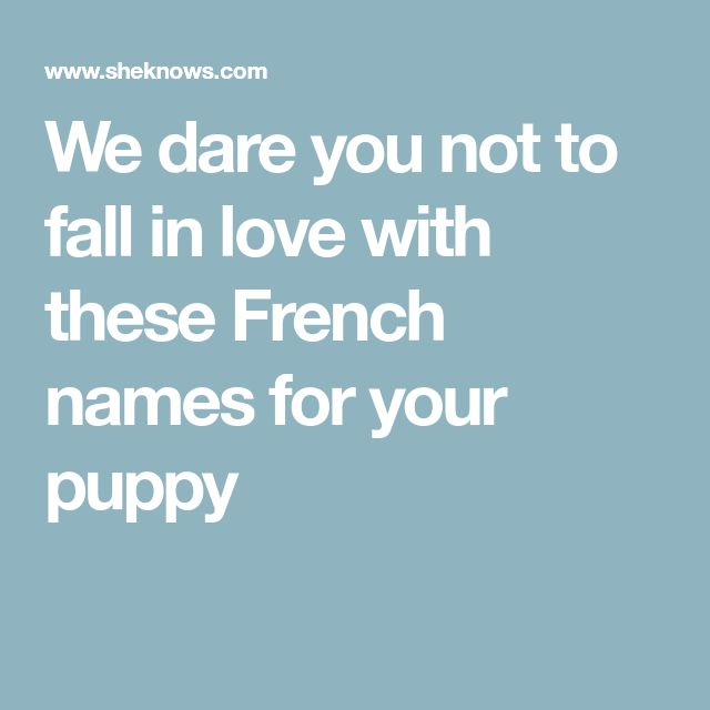 We dare you not to fall in love with these French names for your puppy