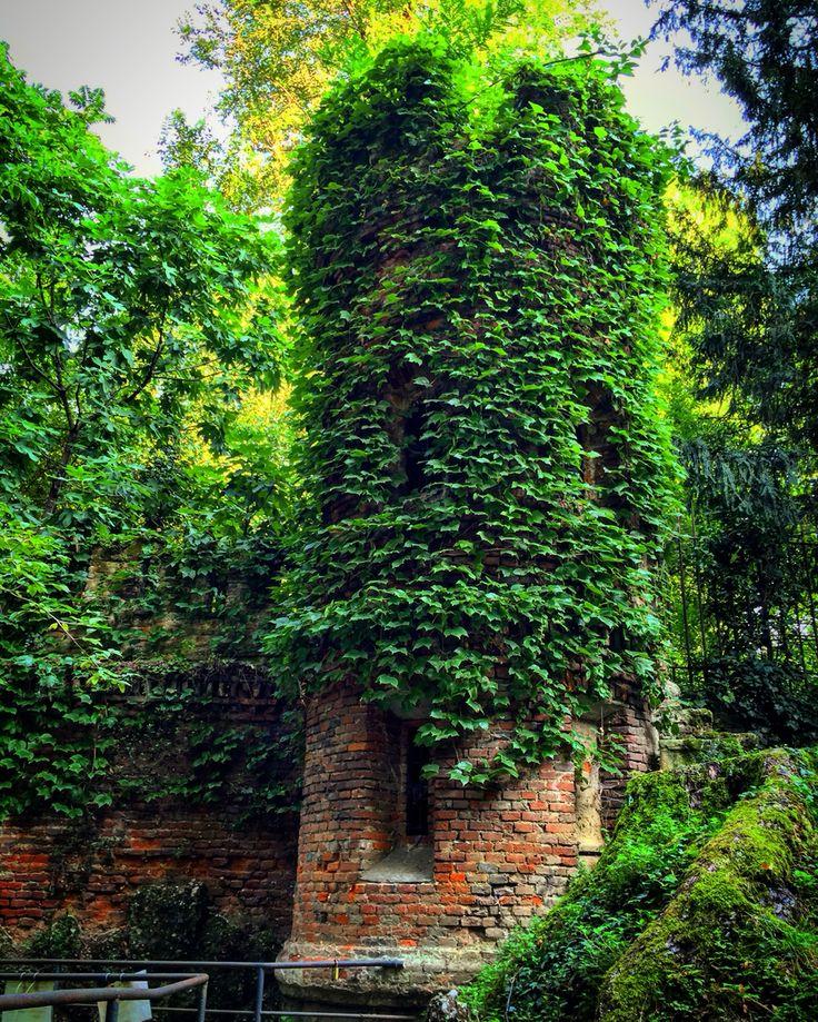 The Turret 📱🏛🍃 #nature #turret #PublicGardens #VillaReale #trees #water #colors #like #good #life #paceofmind #city #beautifulday #location #Palestro #followme #walking #vision #sun #goofday #day #socialnetwork #pinterest #instagram #swarm #i_lovephoto #followme #followers #milan #city #kiss #i_lovephoto #iphone6 #life