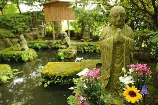 Внутри каждого из нас есть прекрасный цветущий сад.