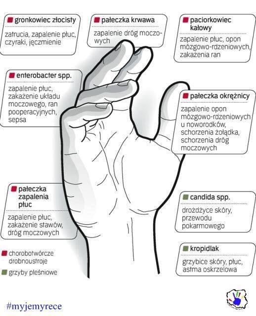 Przedstawiamy Wam zdjęcie z rodzajami bakterii, które znajdują się na naszych dłoniach. #myjemyrece Źródło zdjęcia: Życie Warszawy