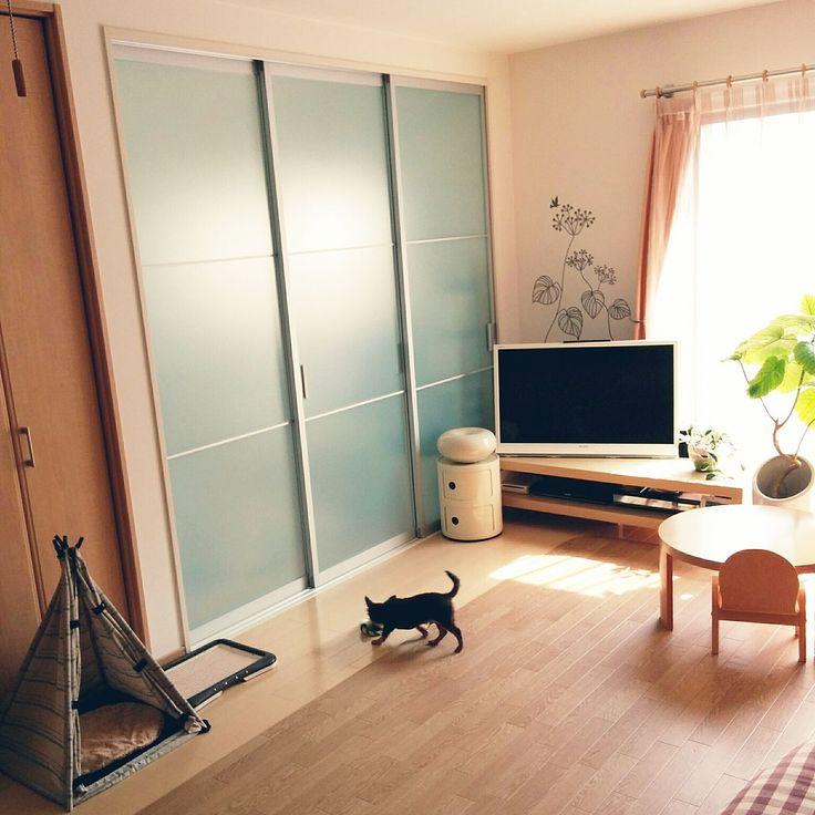 IKEA/ニトリ…などのインテリア実例 - 2016-08-04 10:55:34   RoomClip ... 女性で、4LDKのIKEA/ニトリ/ウォールステッカー/テレビ台/犬