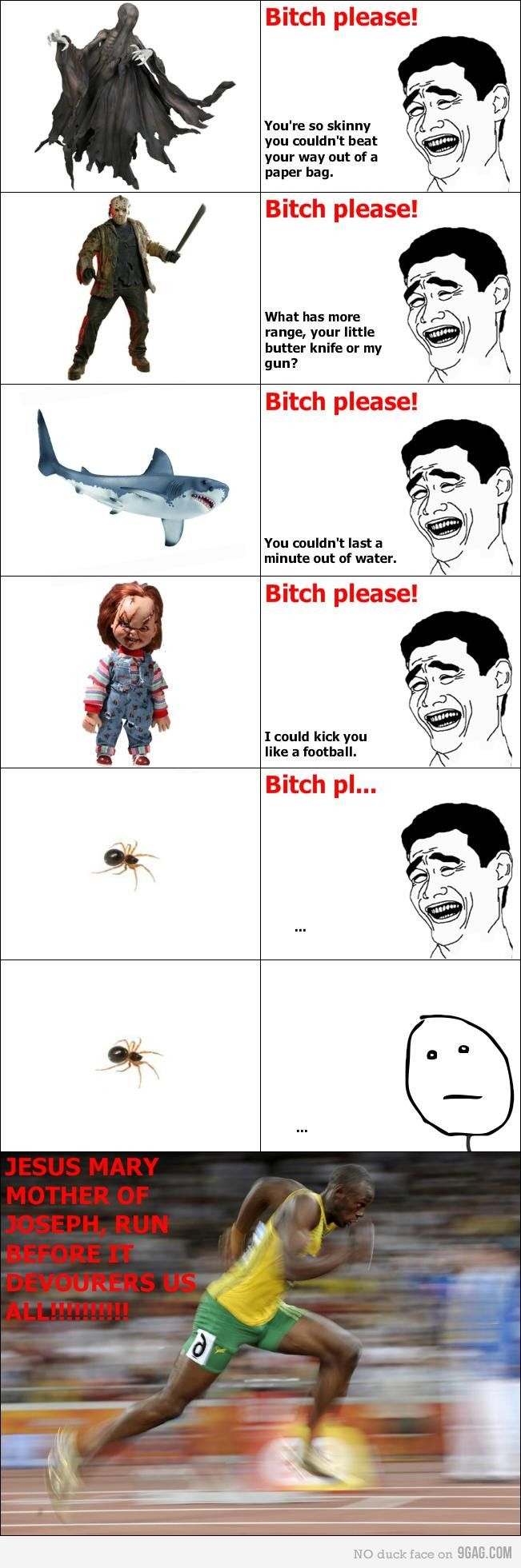 these spider memes always crack me up.