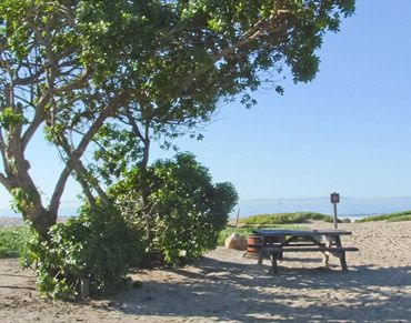 Carpinteria State Beach. Great place for tent camping, and a nice beach no doubt.