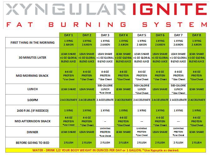"""Image result for xyngular 8 day challenge 