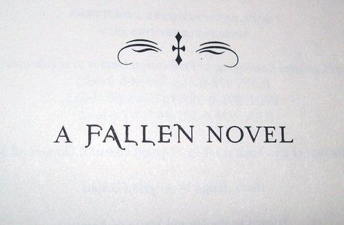 A Fallen Novel