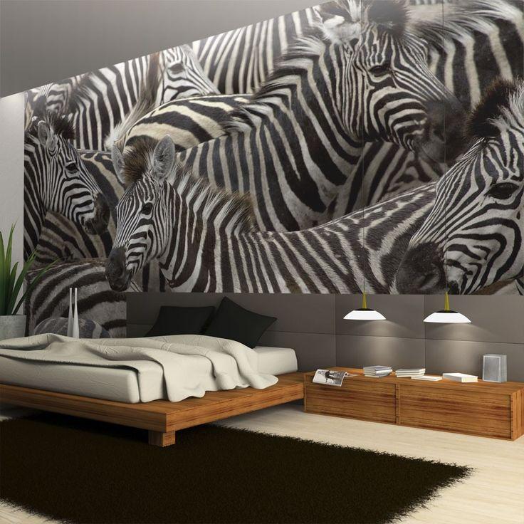 Fototapeta - Stado zebr