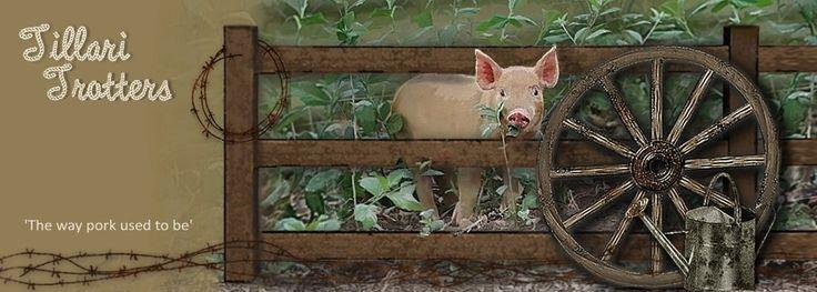Tillari Trotters - Free Range Pork, Ham, Bacon, Lamb for sale in QLD