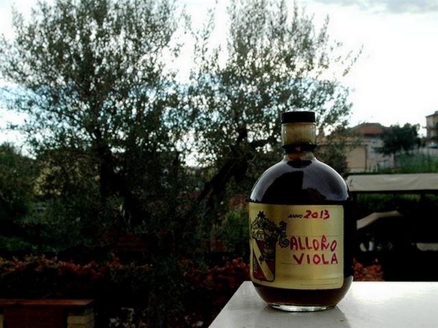 Liquore alle foglie e bacche di Alloro – Vegan blog – Ricette Vegan – Vegane – Cruelty Free