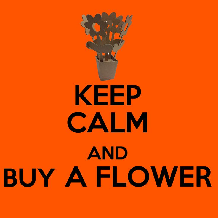 keep calm and by a flower design by www.thin-k.it