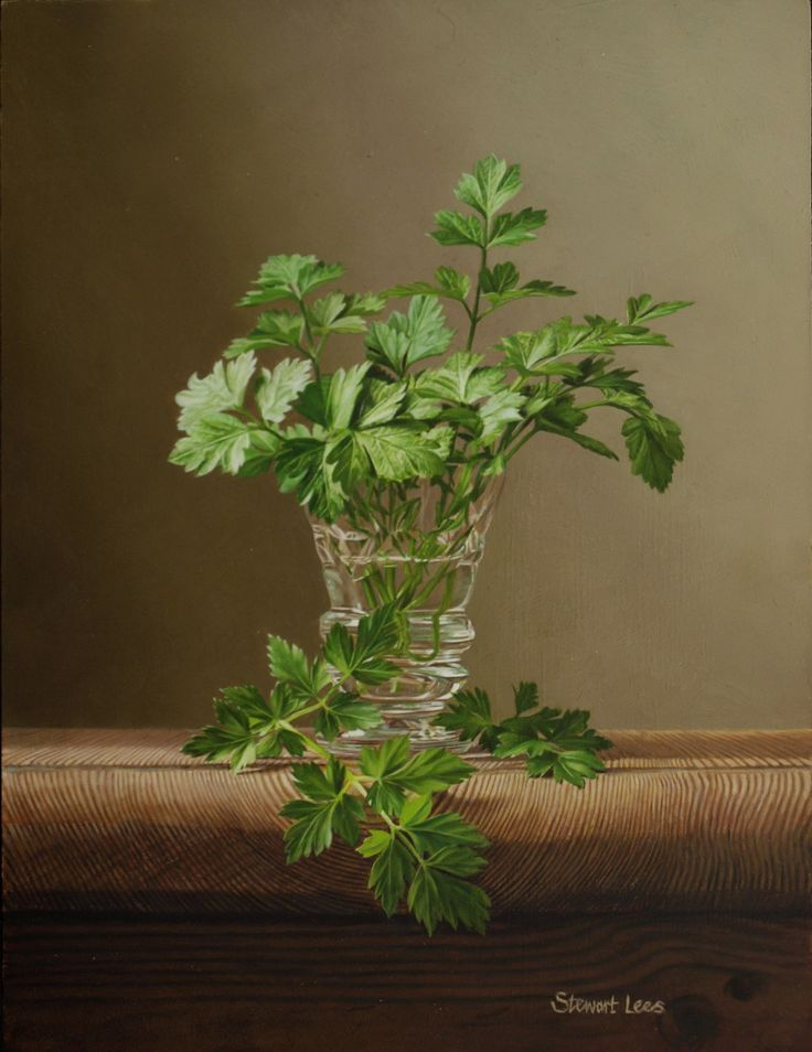 Parsley Cuttings by Stewart Lees (£1,450) | Gladwell & Patterson