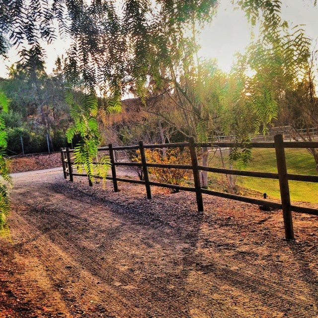 Enjoy the SoCal #weather and journey across Central #Park to discover new, favorite #trails