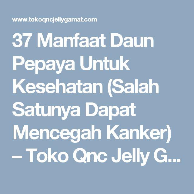 37 Manfaat Daun Pepaya Untuk Kesehatan (Salah Satunya Dapat Mencegah Kanker) – Toko Qnc Jelly Gamat Resmi Indonesia