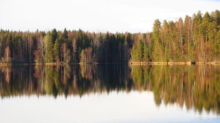 Rauhaa Liesjärvellä