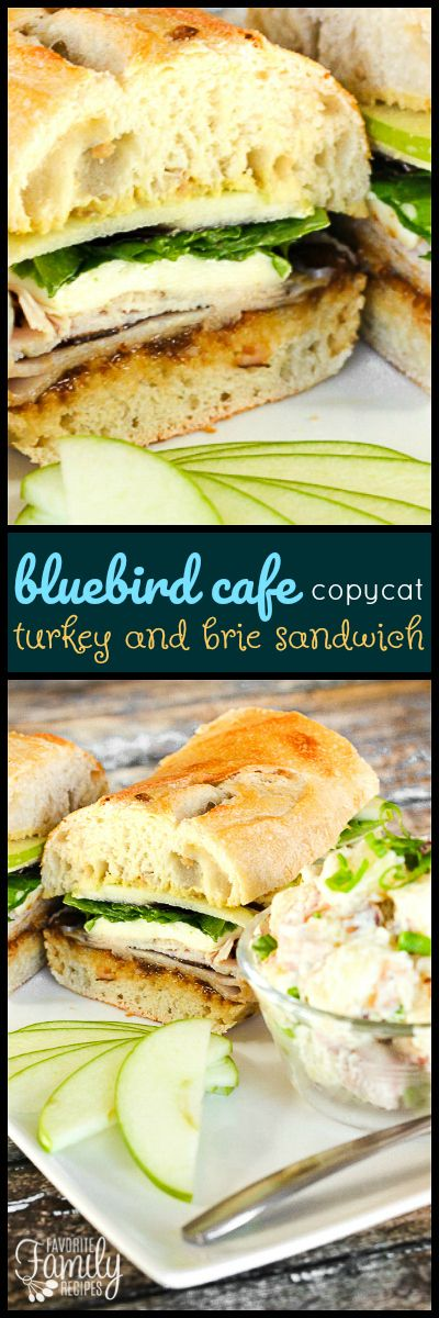 Our Bleubird's Turkey and Brie Sandwich Copycat is the best sandwich ever.  It's unique flavors are so good, like deli turkey, crisp apples, and brie cheese. via @favfamilyrecipz