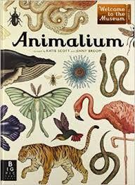 Benvingut a «Animalium». Un museu que està sempre obert i que conté una col·lecció de més de 160 animals per a visitants de totes les edats.