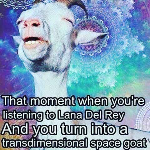 OMFG I CAN'T BREATHE XD  @lana_del_rey_memes #lanadelrey