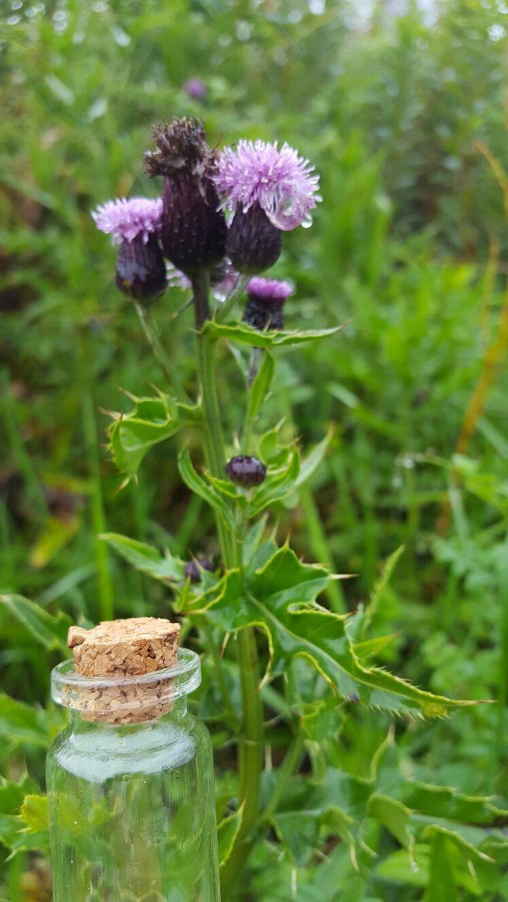Catching some more air next to this Scottish beauty! www.freshislandair.com