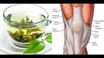 Canela de Velho: Milagroso chá para artrose, artrite, coluna e dores articulares - YouTube