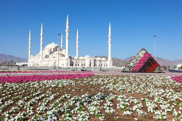 Welkom het epicentrum van de luxe, de hoofdstad van de blingbling en de wolkenkrabbers en de thuishaven van sjeiks en gelukszoekers! Jij gaat op zoek naar je eigen Arabische sprookje in Dubai en Abu Dhabi, twee reuzen van de Verenigde Arabische Emiraten. In je vier- en vijfsterrenhotels word je ondergedompeld in het luxueuze leven dat bij deze bestemming past. Stap op je vliegende tapijt en zet koers naar het land waar alles mogelijk is!