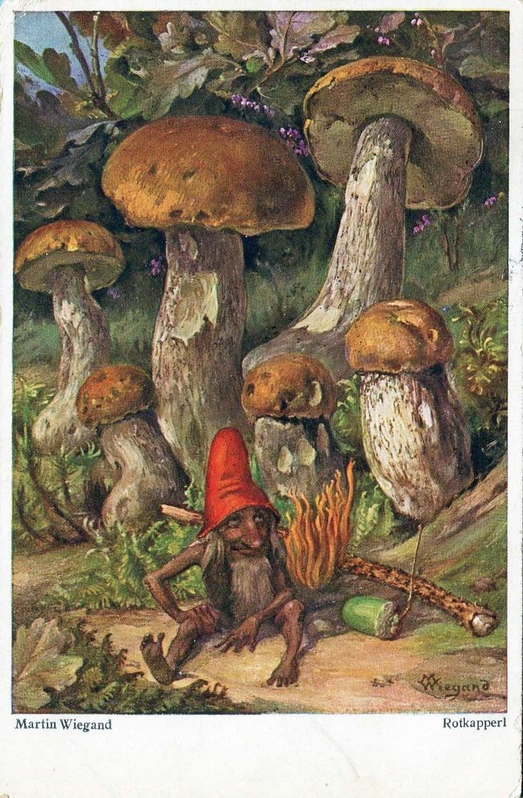 17 Best images about Fairies, gnomes and trolls on ...  17 Best images ...