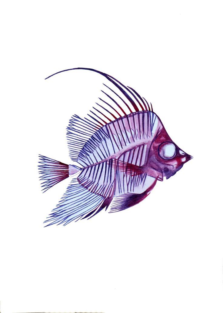 Angel Fishy, Watercolour on paper, Nikolina Ivanovic, 2016