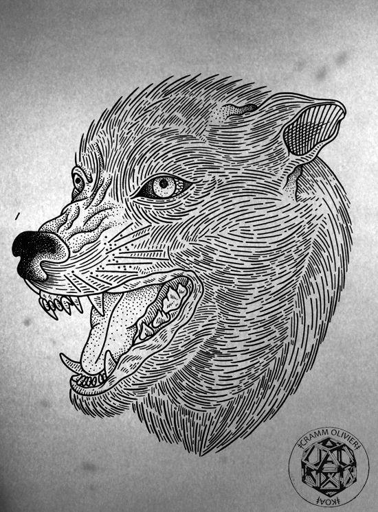 Koa Wolf
