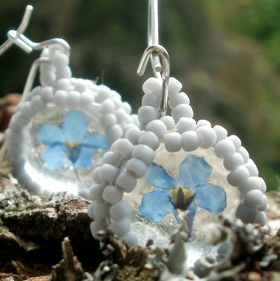 forget me not earrings terrarium flower natural by SparkleCingari