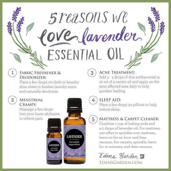 Likely one of the most popular essential oils of all time, Lavender has an…