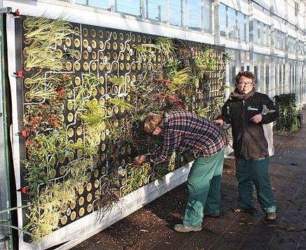 Bezig met het inplanten van de tuin in Berltsum