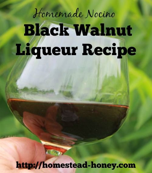 Your backyard black walnut trees can be harvested to make a delicious liqueur called nocino.  Make it in May or June to enjoy during the Winter holidays!   Homestead Honey