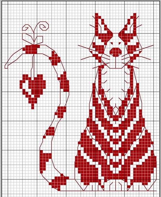 red and white cat.