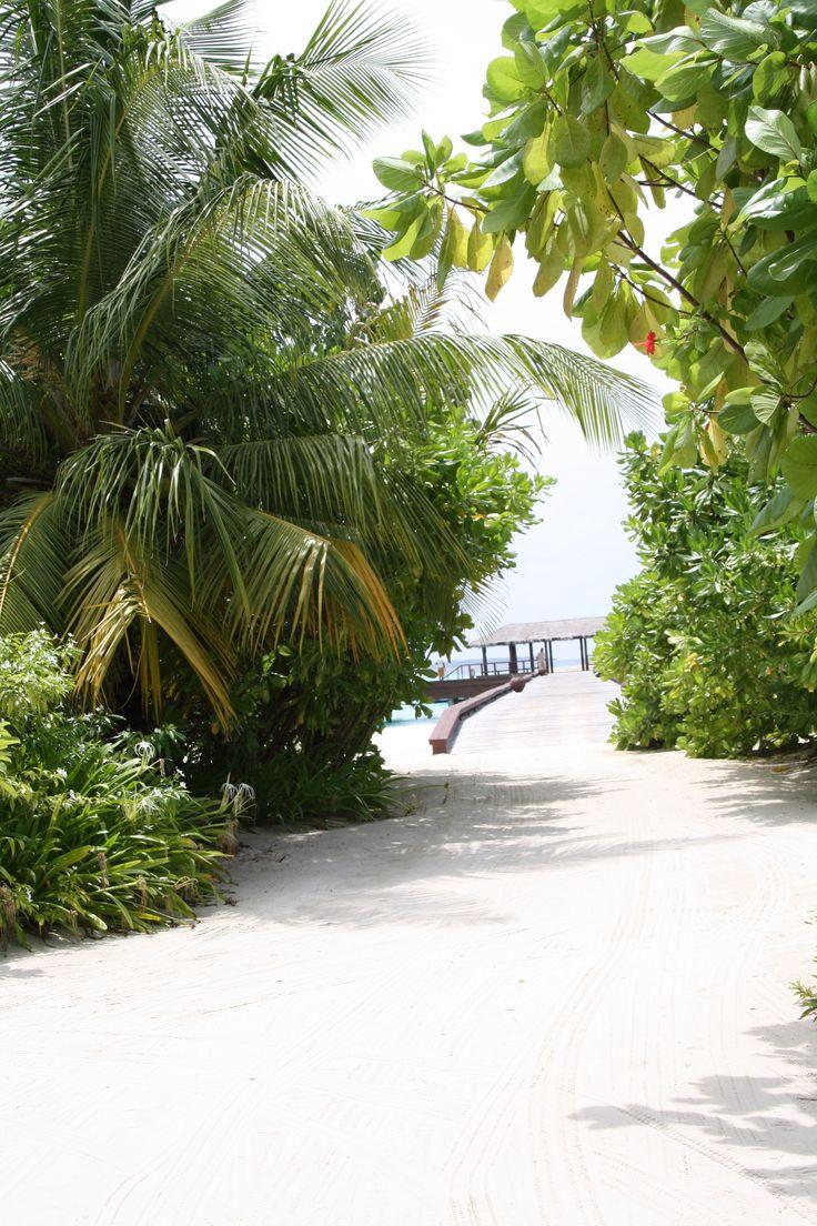 maldives  zitahli resorts & spa kuda-funafaru