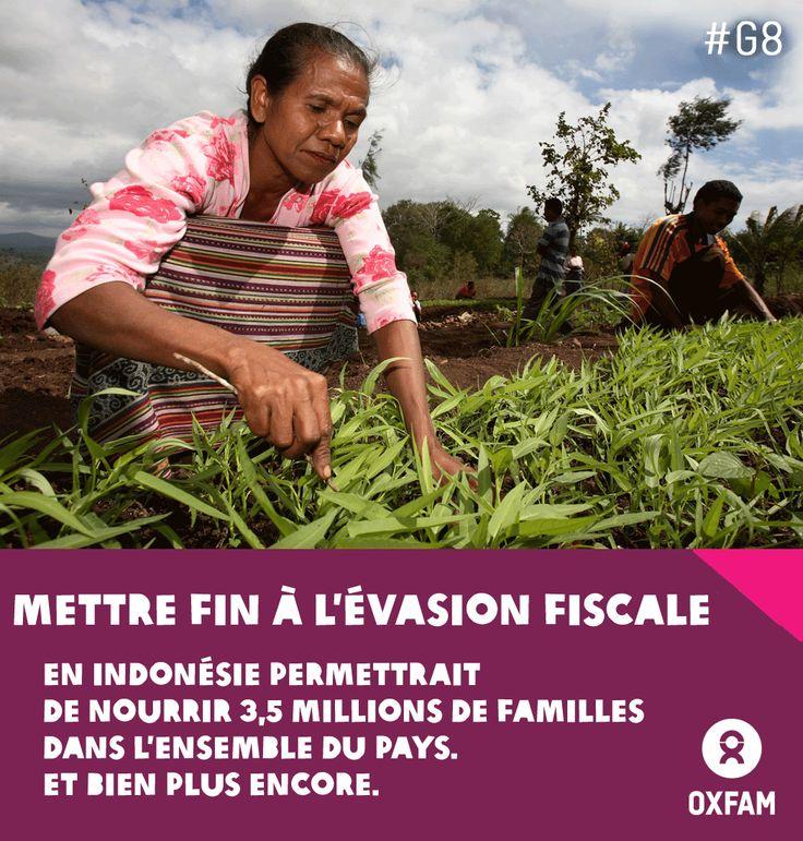 Mettre fin à l'évasion fiscale en Indonésie permettrait de nourrir 3,5 millions de familles dans l'ensemble du pays. Et bien plus encore. Agissons contre les paradis fiscaux : http://oxf.am/UNL