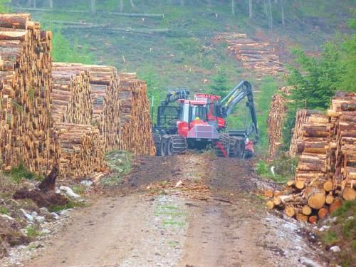 The Wilderness Society condemns bill that would permit lawless logging in America's national forests - See more at: http://wilderness.org/blog/wilderness-society-condemns-bill-would-permit-lawless-logging-america%E2%80%99s-national-forests#sthash.13x7VpWi.dpuf