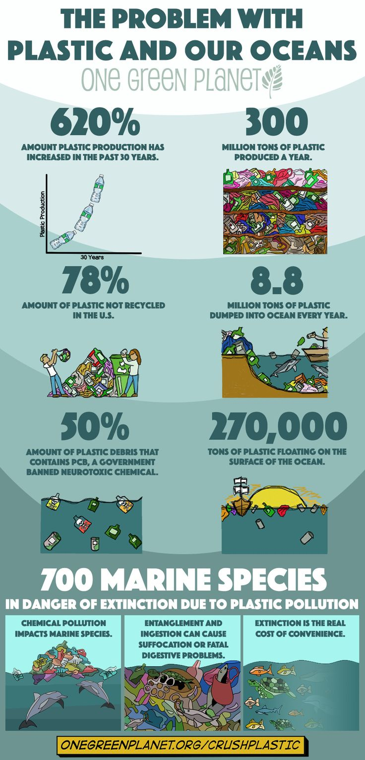 stunning infographic shows how our plastic habit impacts