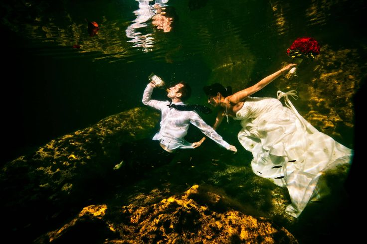 The best wedding photo I've ever been in - ImgurPhotos Ideas, Drinks Underwater, Weddingengagement Photos, Photography Photography, Awesome Wedding Photos, Funny Wedding Photos, Best Wedding Photos, Funny Weddings, Fairies Tales