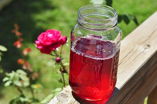 Homemade Rose Syrup, Rose Jam, and Rose Drink Concentrate