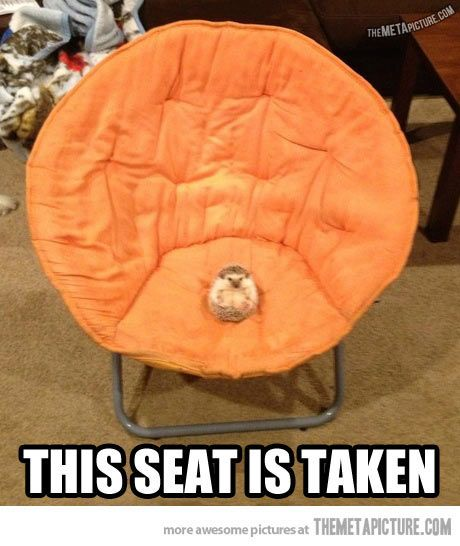 Sorry, find another chair…
