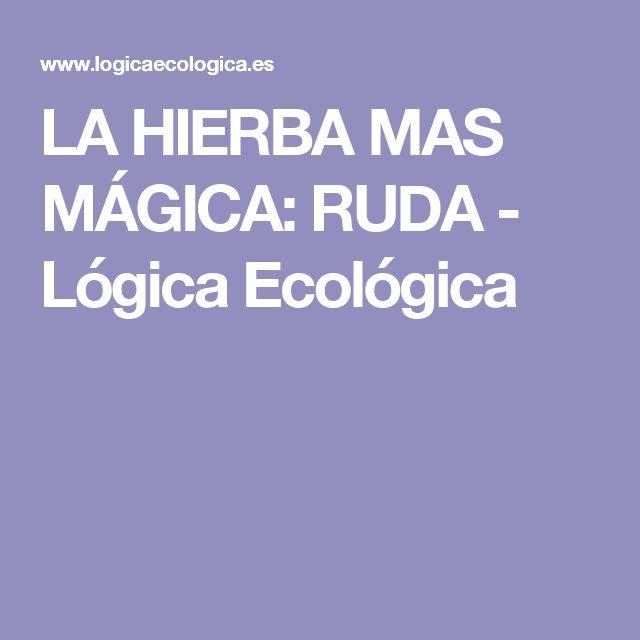 LA HIERBA MAS MÁGICA: RUDA - Lógica Ecológica