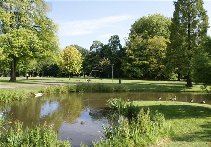 Het Park is het bekendste park van Rotterdam en is in de zomer een populaire bestemming voor met name locals die er een potje midgetgolfen, een bezoekje brengen aan de Euromast of als het lekker weer is met vrienden bbq-en.