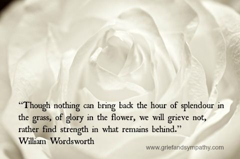 splendor in the grass poem wordsworth | Grief Quotes for Comfort and Quiet Thought