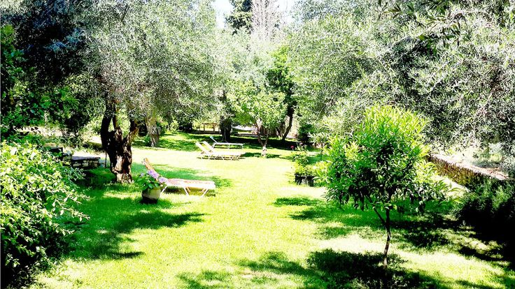OUTDOORS  Garden   The verdurous garden creates an amazing scenery! Every little corner is a small surprise! The towering cypresses,the oak and olive trees, and the pergolas with the climbed jasmines offer you their refreshing shade!