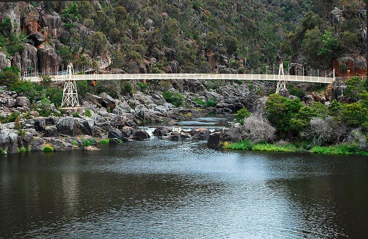 Cataract Gorge, Launceson. Walked across this suspension bridge.
