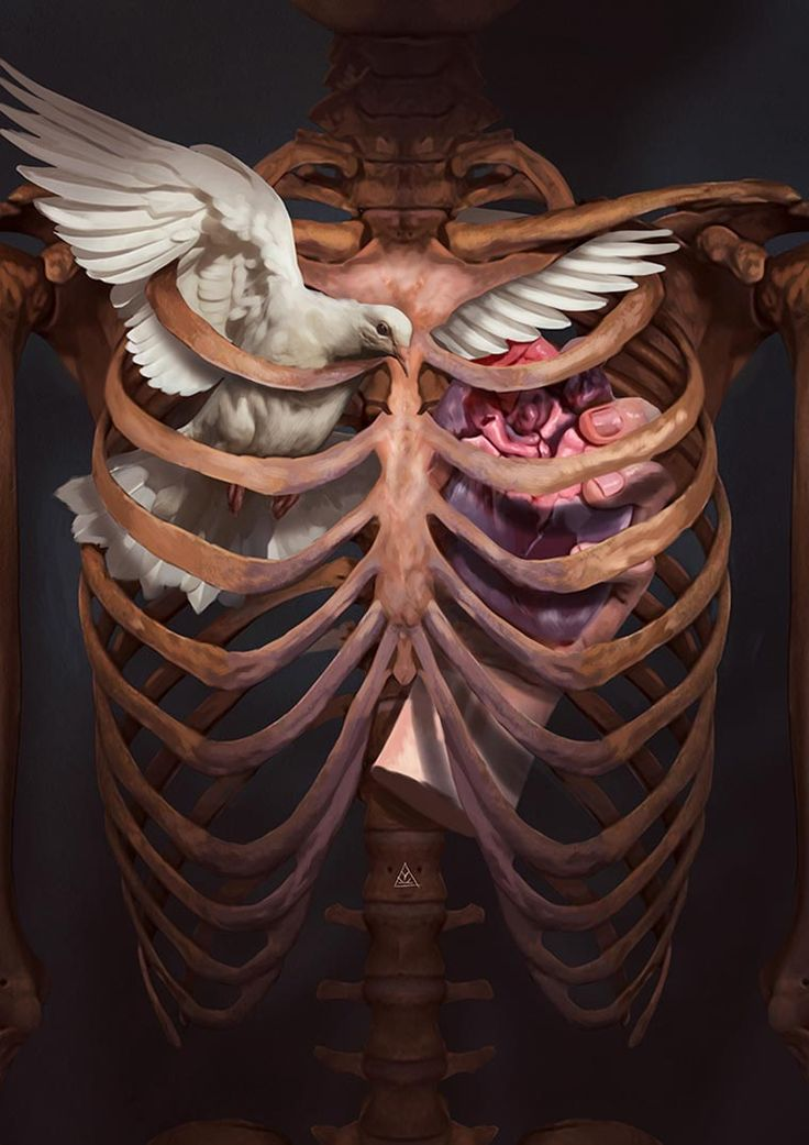 Animal Soul – Les nouvelles illustrations conceptuelles d'Aykut Aydogdu (image)