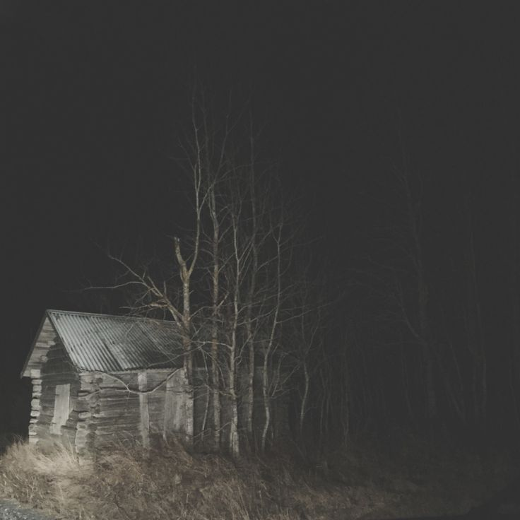 Last night I awoke, hearing deep bodiless sighs of breath emerging from the dark.